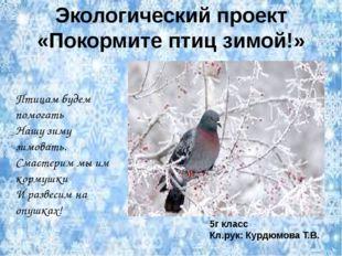 Экологический проект «Покормите птиц зимой!» Птицам будем помогать Нашу зиму