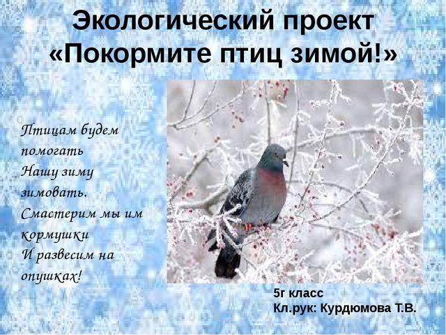 Экологический проект «Покормите птиц зимой!» Птицам будем помогать Нашу зиму...