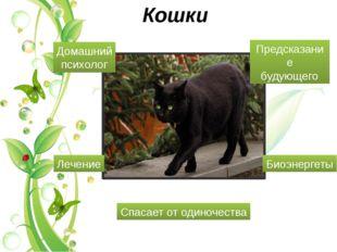 Кошки Лечение Биоэнергеты Спасает от одиночества Домашний психолог Предсказан