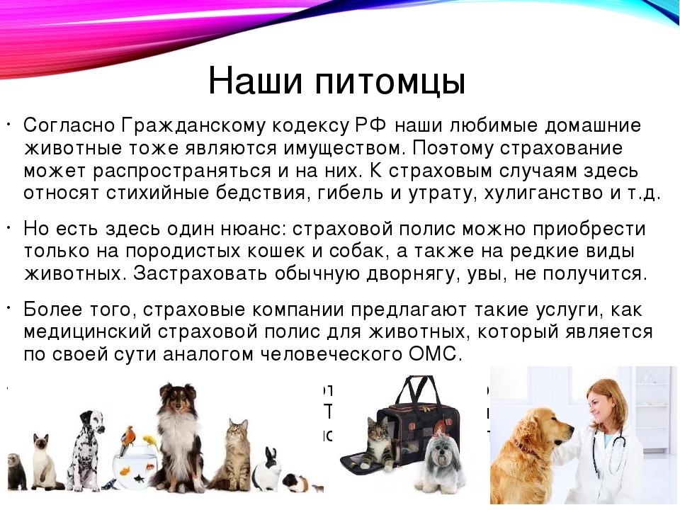 Наши питомцы Согласно Гражданскому кодексу РФ наши любимые домашние животные...