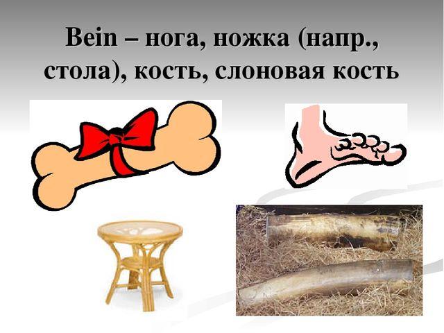 Bein – нога, ножка (напр., стола), кость, слоновая кость