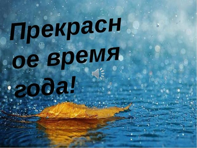 Прекрасное время года! Прекрасное время года осень! Точнее золотая осень.