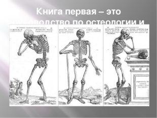Книга первая – это руководство по остеологии и артрологии.