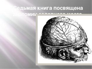 Седьмая книга посвящена анатомии головного мозга.