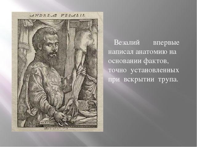 Везалий впервые написал анатомию на основании фактов, точно установленных пр...