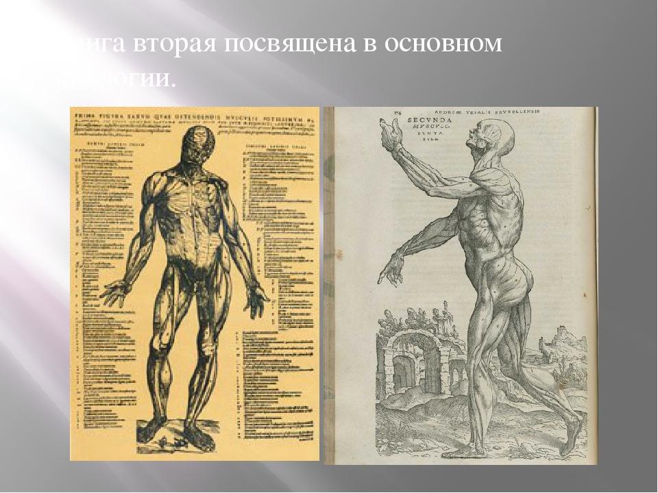 Книга вторая посвящена в основном миологии.