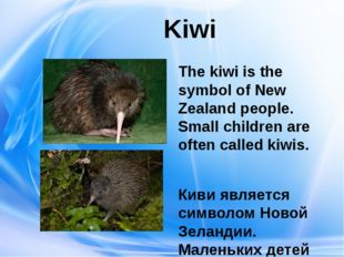 Kiwi The kiwi is the symbol of New Zealand people. Small children are often