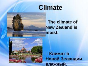 Climate The climate of New Zealand is moist. Климат в Новой Зеландии влажный.