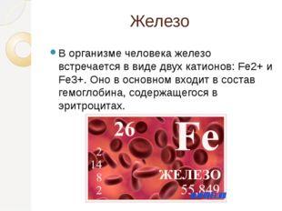 Железо В организме человека железо встречается в виде двух катионов: Fe2+ и F