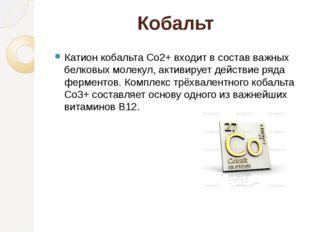 Кобальт Катион кобальта Co2+ входит в состав важных белковых молекул, активир