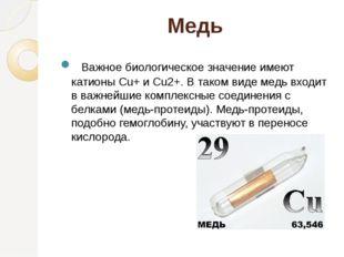 Медь Важное биологическое значение имеют катионы Cu+ и Cu2+. В таком виде м