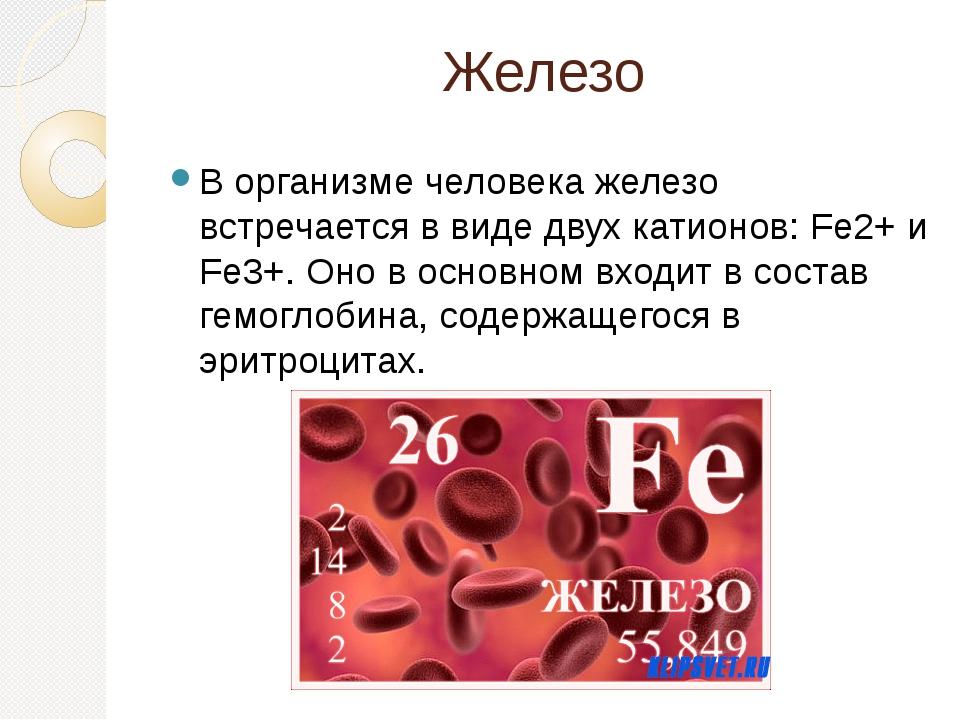 Железо В организме человека железо встречается в виде двух катионов: Fe2+ и F...