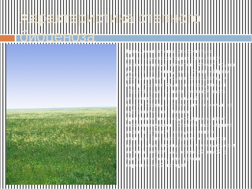 Характеристика степного биоценоза Крым, несмотря на относительно небольшую те...