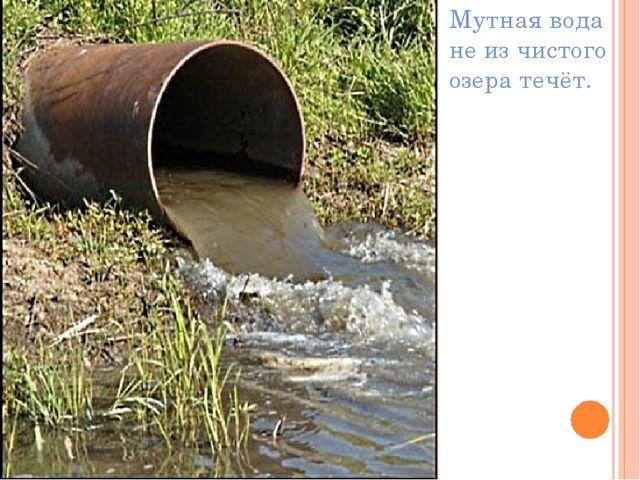 Мутная вода не из чистого озера течёт.
