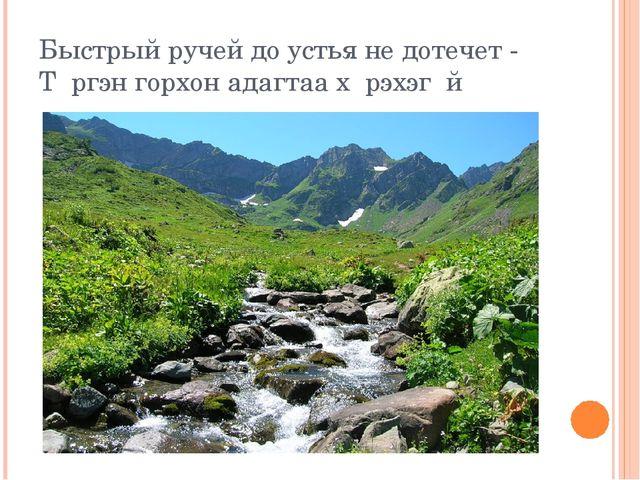 Быстрый ручей до устья не дотечет - Тγргэн горхон адагтаа хγрэхэгγй