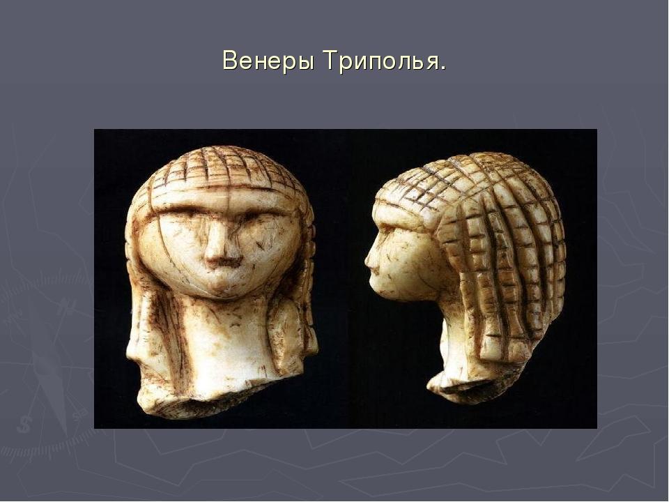 Венеры Триполья.