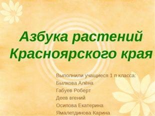 Азбука растений Красноярского края Выполнили учащиеся 1 п класса: Былкова Алё