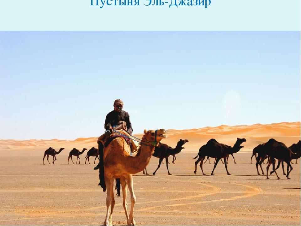 Пустыня Эль-Джазир