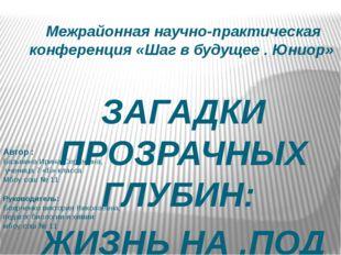 Межрайонная научно-практическая конференция «Шаг в будущее . Юниор» ЗАГАДКИ П
