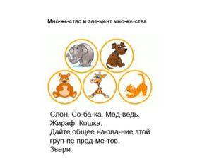 Слон. Собака. Медведь. Жираф. Кошка. Дайте общее название этой группе п