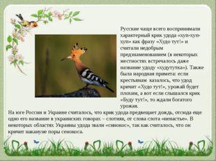 Русские чаще всего воспринимали характерный крик удода «хуп-хуп-хуп» как фраз