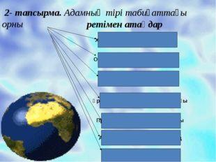 Хордалылар (желілер) типі Омыртқалылар тип тармағы Сүтқоректілер класы Ұрық