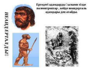 НЕАНДЕРТАЛДЫҚ Ертедегі адамдарды ғылыми тілде палеонтроптар , кейде неандерт