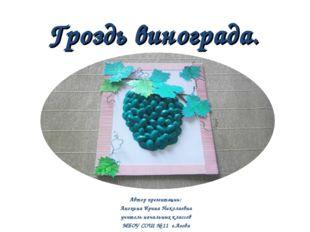 Автор презентации: Анохина Ирина Николаевна учитель начальных классов МБОУ С