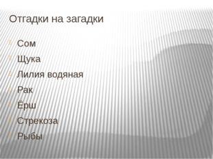 Отгадки на загадки Сом Щука Лилия водяная Рак Ёрш Стрекоза Рыбы