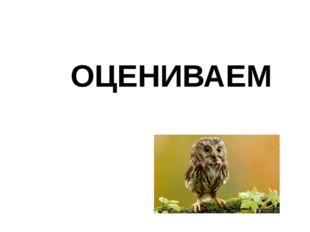 ОЦЕНИВАЕМ