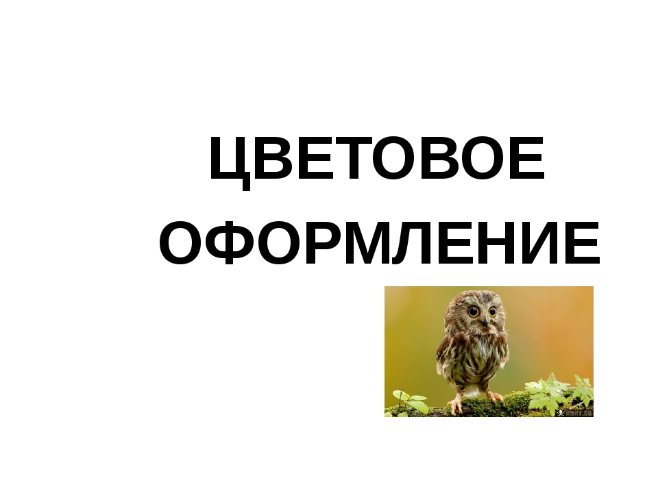 ЦВЕТОВОЕ ОФОРМЛЕНИЕ