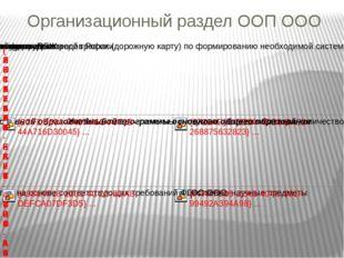 Организационный раздел ООП ООО