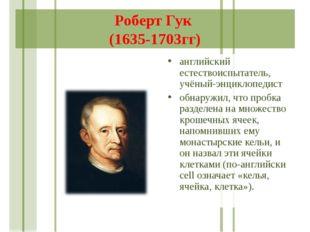 Роберт Гук (1635-1703гг) английский естествоиспытатель, учёный-энциклопедист