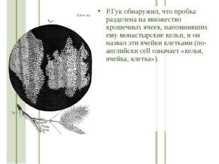 Р.Гук обнаружил, что пробка разделена на множество крошечных ячеек, напомнивш