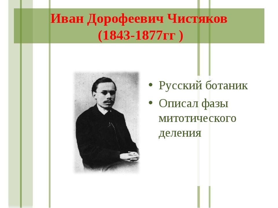 Иван Дорофеевич Чистяков (1843-1877гг ) Русский ботаник Описал фазы митотичес...
