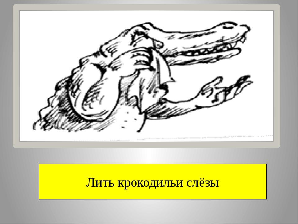 Лить крокодильи слёзы