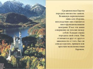 Средневековая Европа породила множество замков. Возникнув первоначально лишь