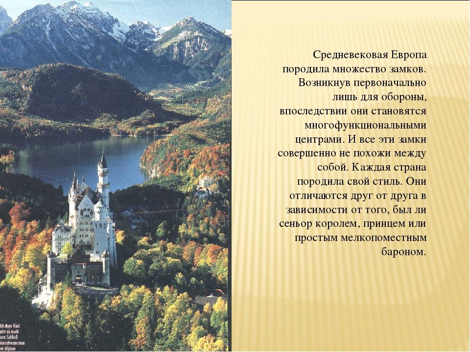 Средневековая Европа породила множество замков. Возникнув первоначально лишь...