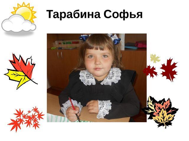 Тарабина Софья