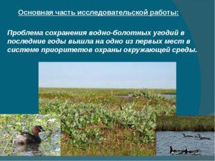 Основная часть исследовательской работы: Проблема сохранения водно-болотных у