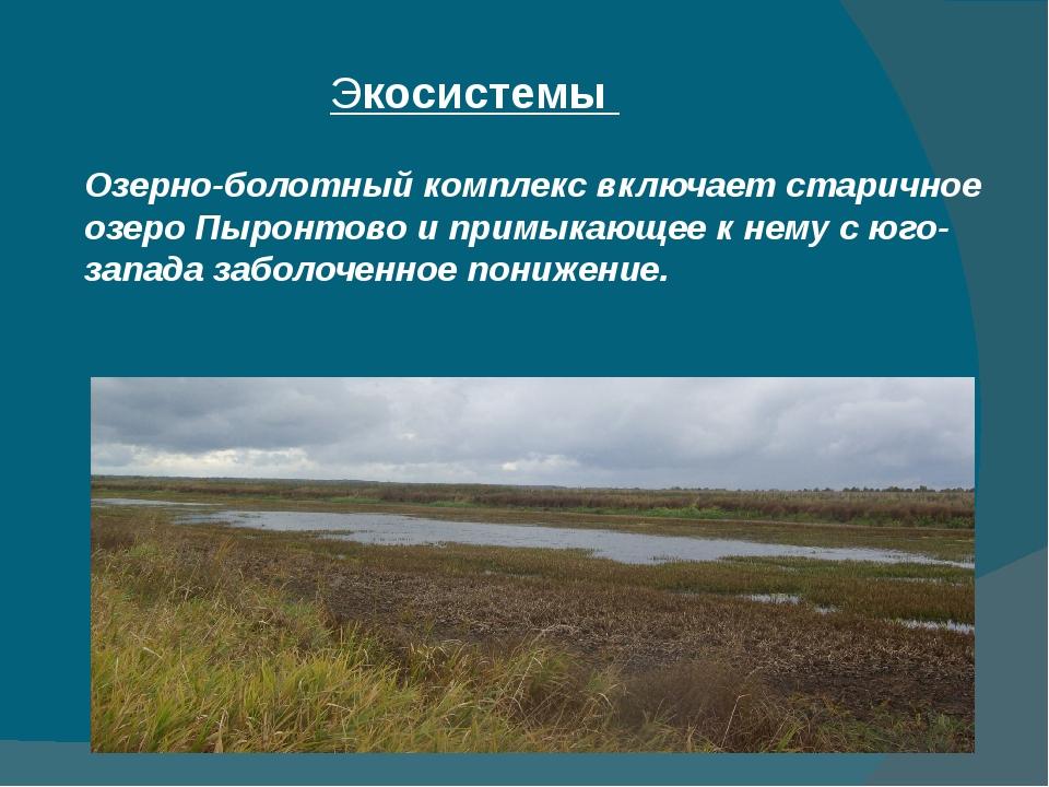 Экосистемы  Озерно-болотный комплекс включает старичное озеро Пыронтово и пр...