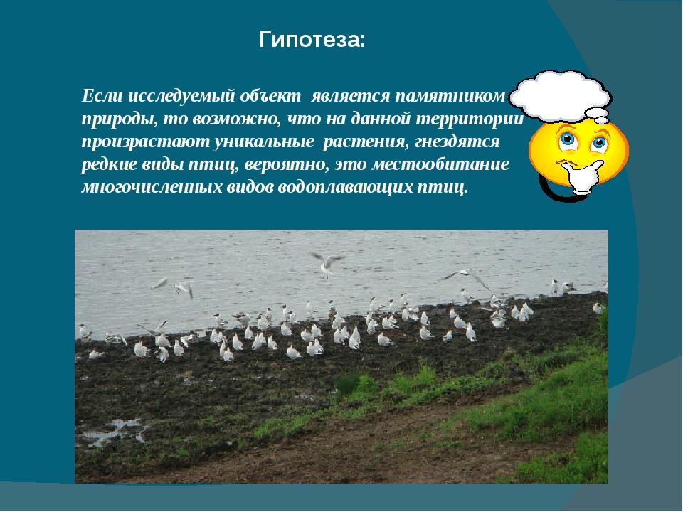 Гипотеза: Если исследуемый объект является памятником природы, то возможно, ч...