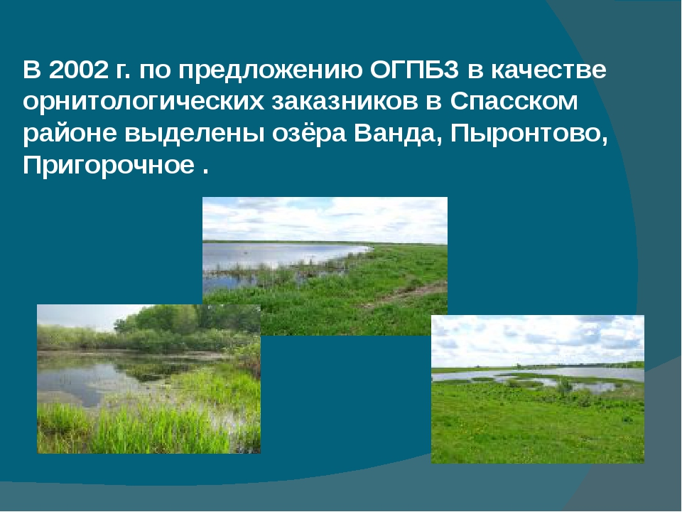В 2002 г. по предложению ОГПБЗ в качестве орнитологических заказников в Спас...