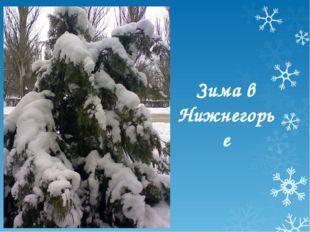 Зима в Нижнегорье