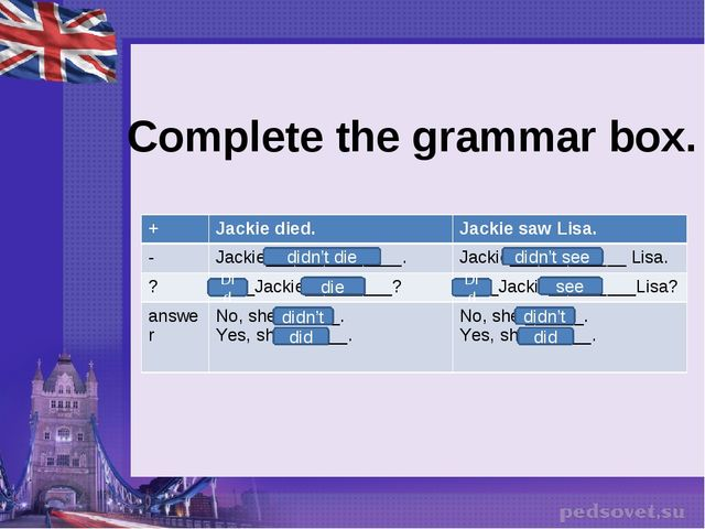 Complete the grammar box. die Did didn't did didn't die didn't see Did see d...