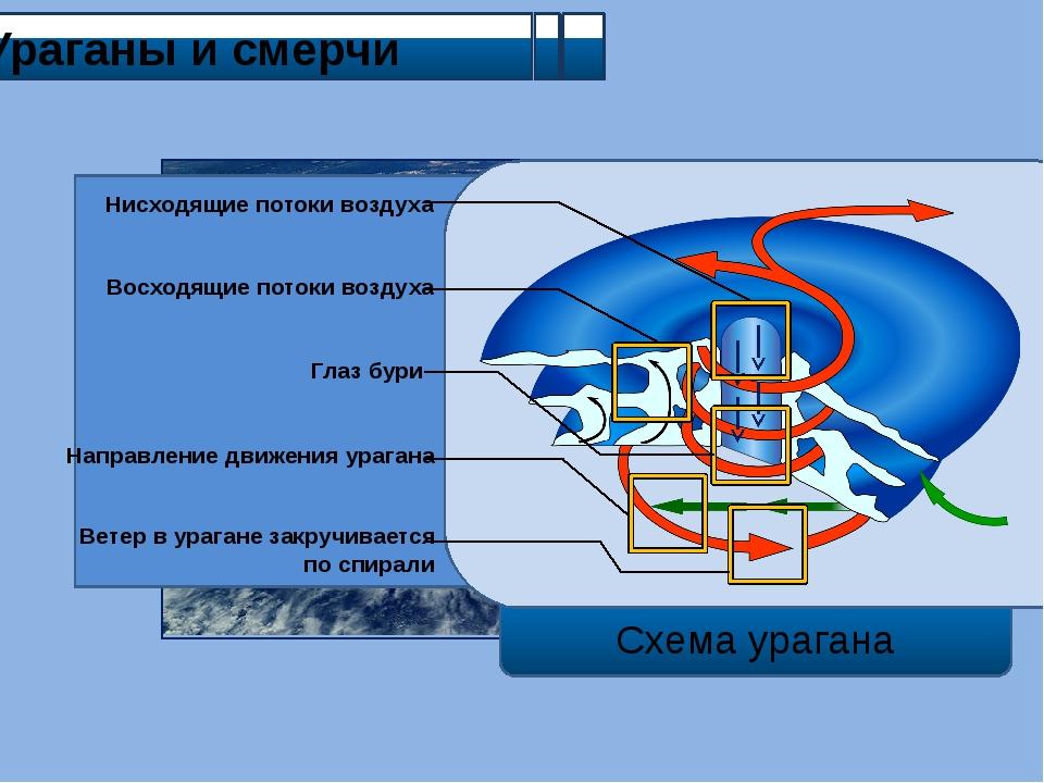 Ураганы и смерчи Схема урагана Нисходящие потоки воздуха Направление движени...