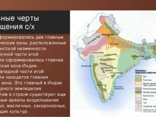 Основные черты размещения с/х В Индии сформировались две главные земледельчес