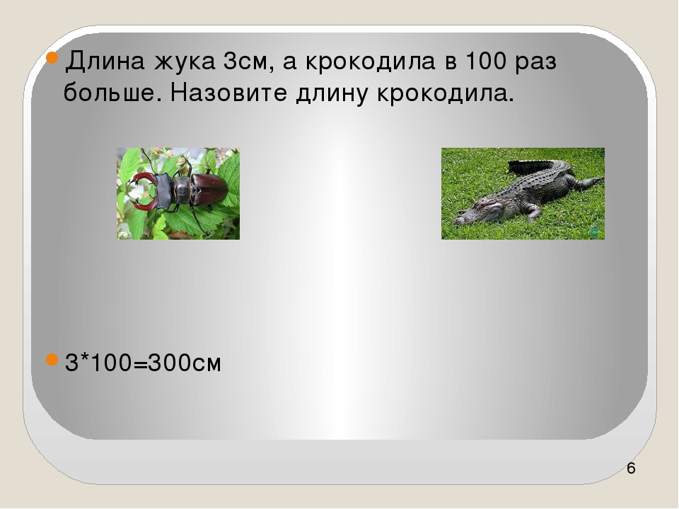 Длина жука 3см, а крокодила в 100 раз больше. Назовите длину крокодила. 3*10...