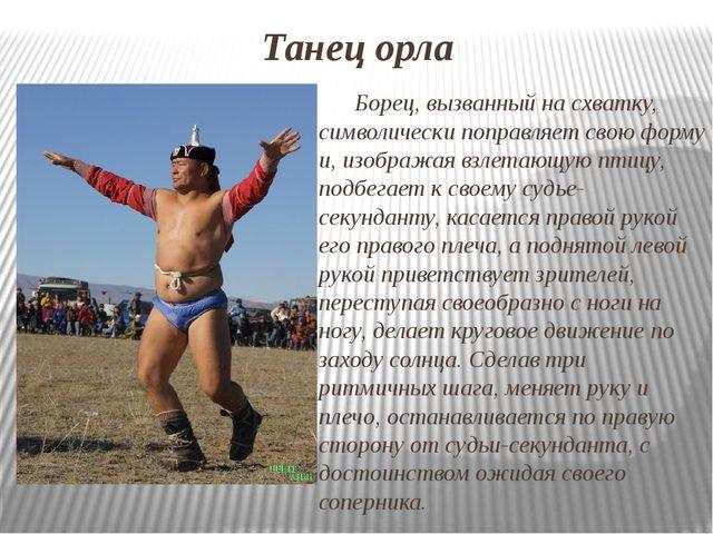 Танец орла Борец, вызванный на схватку, символически поправляет свою форму и,...