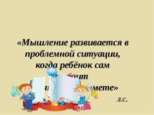 «Мышление развивается в проблемной ситуации, когда ребёнок сам строит поняти